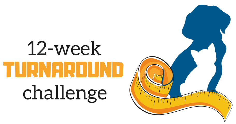 12-week turnaround challenge