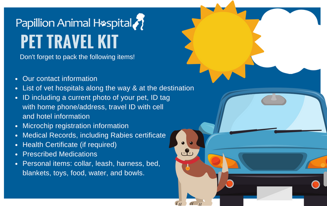 Traveling with your pets